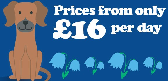 Prices from only £16 per day